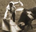 Bullfight, 1996