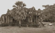 White horse, Angkor Wat