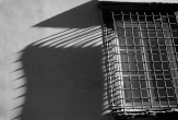 Window, Lucca, 1995